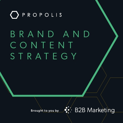Brand and Content Strategy Propolis Hive