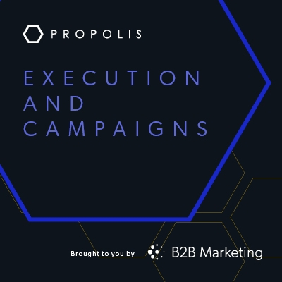 Execution and campaigns