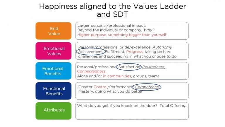 Values Ladder Diagram