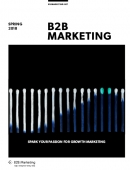 B2B Marketing Spring 2018