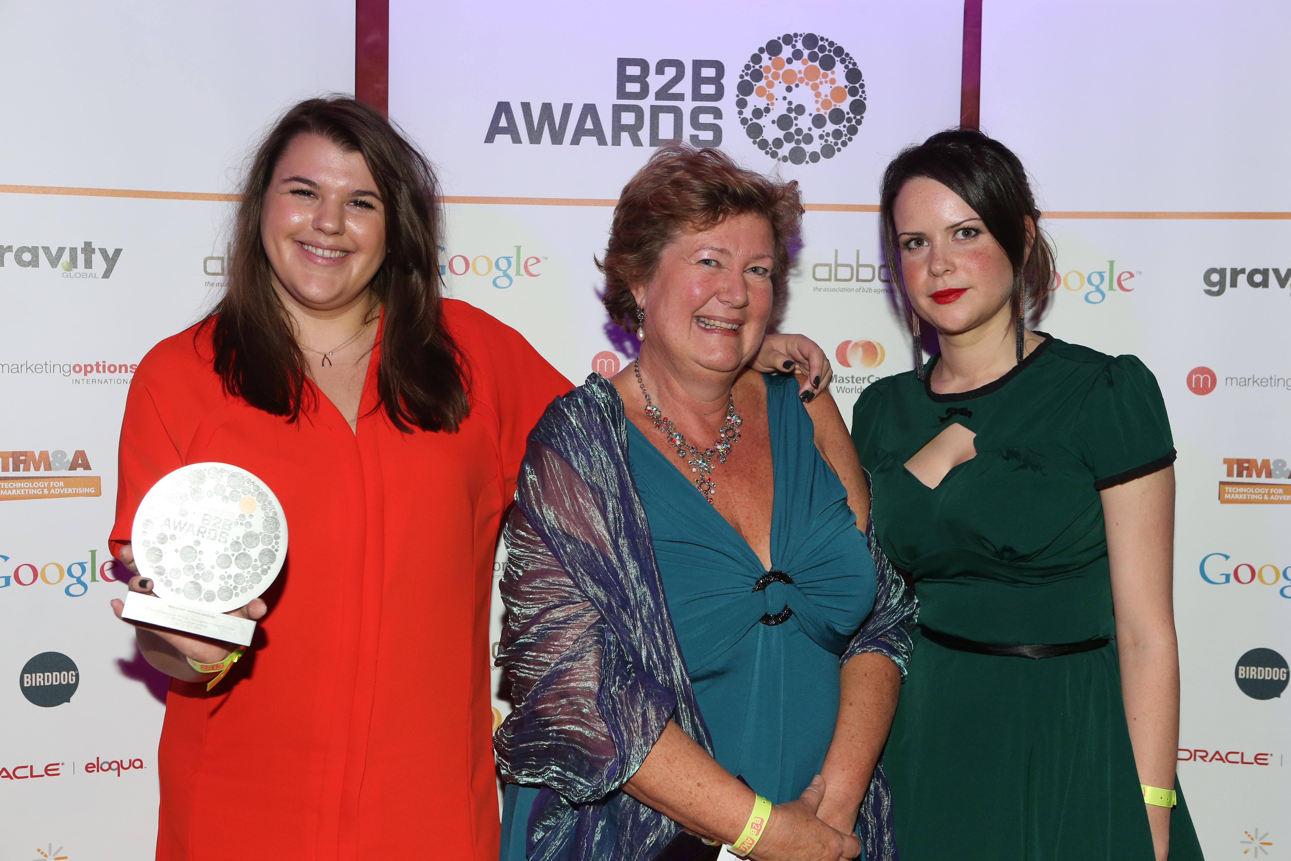 B2B Awards 2013