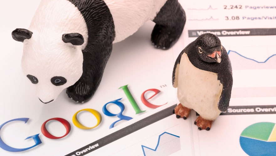 Panda and penguin with the Google logo image