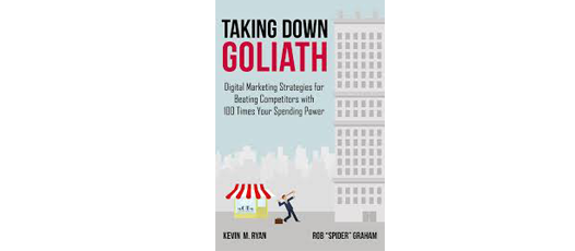 Taking down goliath book review