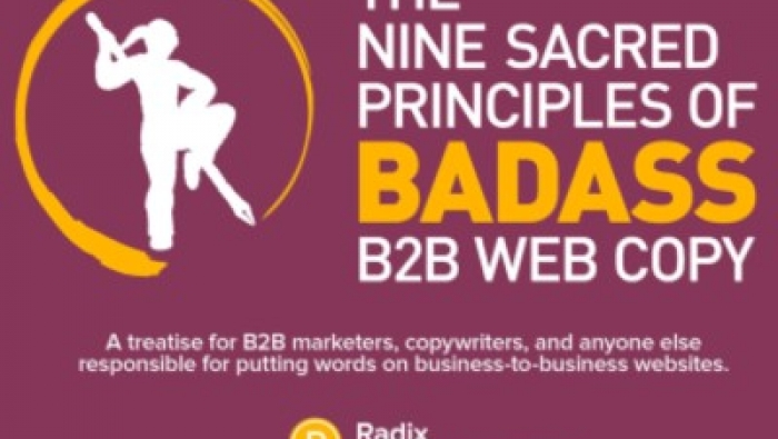 This no-holds-barred guide will lead you through nine sacred lessons you'll need to leave weak, me-too web writing behind, and deliver B2B web content that works