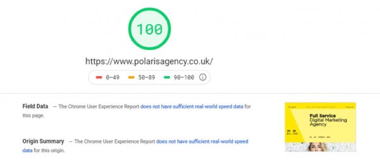Google PageSpeed Insights screenshot image