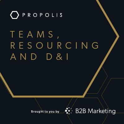 Propolis Hive: Teams and resourcing