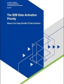 The B2B data activation priority