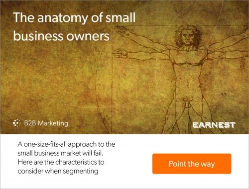 The anatomy of an SME
